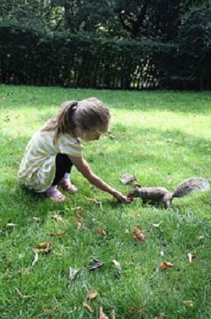squirrel_feeding